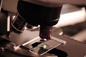 催化剂&膜电极定制开发